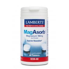 MagAsorb - 60