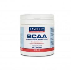 BCAA – Branch Chain Amino Acids
