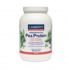 Pea Protein